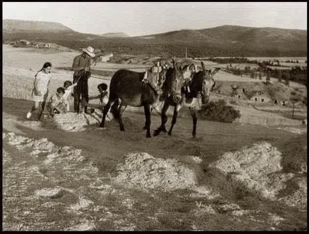 niños en el mundo rural