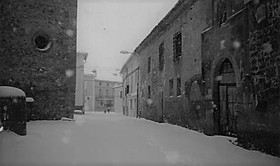 Torrelapaja nevada